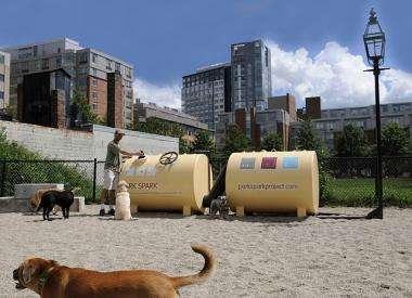 Dog park lit by dog poop