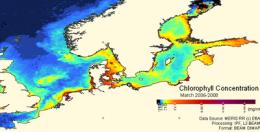 ESA satellite data reduce invasion of alien species