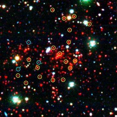 Ghosts of the future: First giant structures of the universe