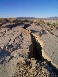 Like fireflies, earthquakes may fire in synchrony