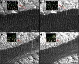 Mars Dunes: On the Move?