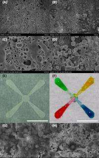 New lab-on-chip advance uses low-cost, disposable paper strips