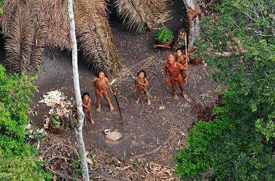 Undated handout picture released by Survival International of what they say are uncontacted Indians
