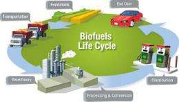 University researchers develop first stable bio-oil for transportation use