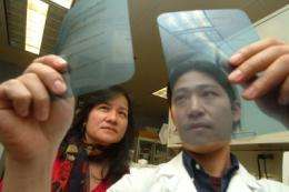 Potential new target for drugs to treat iron deficiency and overload discovered