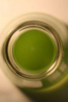 Study shows potential for using algae to produce human therapeutic proteins