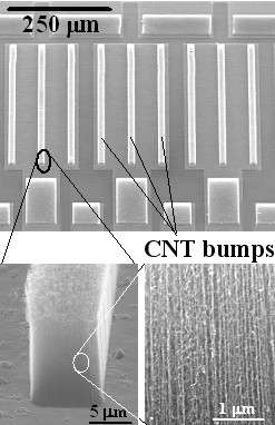 Figure 3: Carbon nanotube bumps