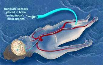 Wiring the Brain at the Nanoscale