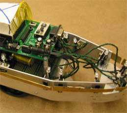 This robot was designed with the same basic senses and motor skills as a rat pup