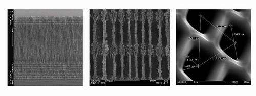 Scanning electron micrographs of 1-D and 2-D photonic bandgap structures made of silicon and used in biosensing