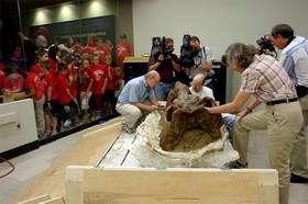 NASA Uses High-Tech X-Ray Equipment to Examine Dinosaur Skull