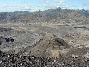 Mt. St. Helens Recovery Slowed by Caterpillar