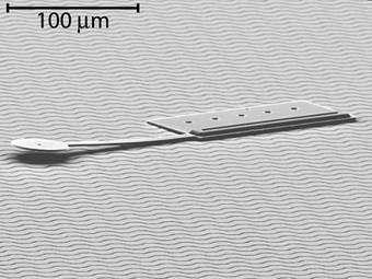 Researchers build world's smallest mobile robot