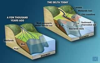 New study fuels Louisiana subsidence controversy