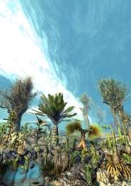 Study: Plants can be divided into species