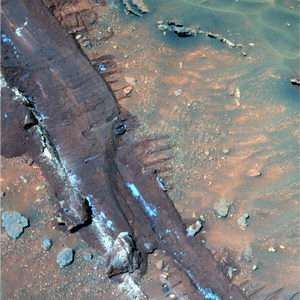 Rovers Look Forward to A Second Martian Spring