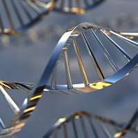 DNA to go: Texas A&M chemical engineer aims for DNA lab-on-a-chip