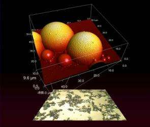 Fossilized liquid assembly: Nanomaterials research tool