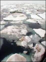 Melting Arctic sea ice