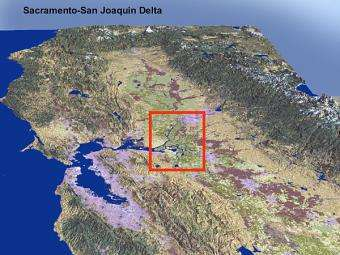 Experts fear impacts of quake on San Francisco Bay Delta