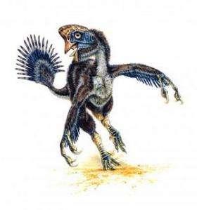 Giant Raptor Dinosaur Discovered in Utah Monument