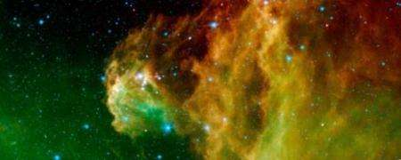 Baby Stars Hatching in Orion's Head