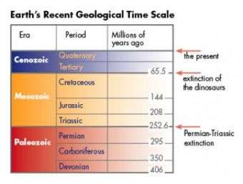 Earth's Recent Geological Time Scale