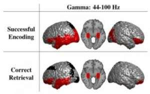 Gamma Oscillations Distinguish True from False Memories