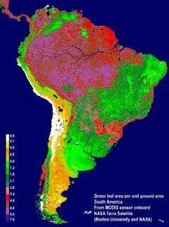 Scientists Study True Colors of Amazon Rainforests