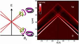Electron spin and orbits in carbon nanotubes are coupled