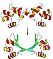 Researchers Tackling Unsolved Questions About Protein Structures