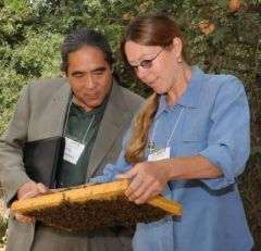 Building Better Bees