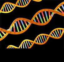 DNA clues to reproductive behaviour