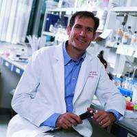 Study links molecule to muscle maturation, muscle cancer