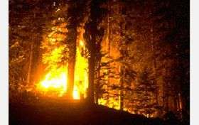 Wildfires cause ozone pollution to violate health standards, new study shows