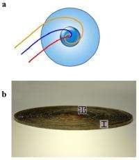 Chinese scientists create metamaterial black hole
