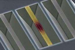 Caltech scientists create nanoscale zipper cavity that responds to single photons of light