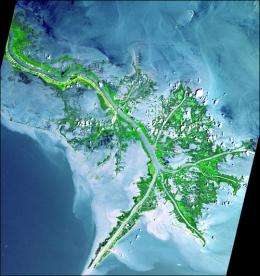 Diverting Sediment-rich Water Below New Orleans Could Lead to Extensive New Land