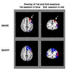First-time Internet users find boost in brain function after just 1 week