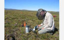 Life Underground Critical to Earth's Ecosystems
