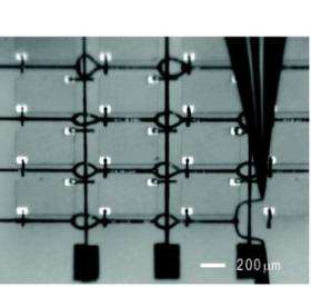 New silver-based ink has applications in printed electronics