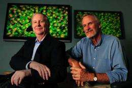 Targeting tumors: Researchers develop more precise approach to delivery of chemotherapy drugs