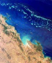 The reef is one of Australia's top tourist attractions