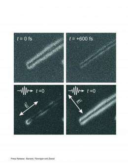 Caltech scientists film photons with electrons