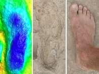 1.5 million-year-old fossil humans walked on modern feet (Video)