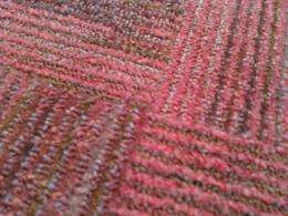 The Physics Of A Bump In A Rug