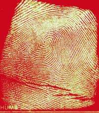 Researchers give high marks to new technology for fingerprint identification
