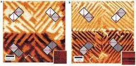Researchers can precisely manipulate polarization in nanostructures