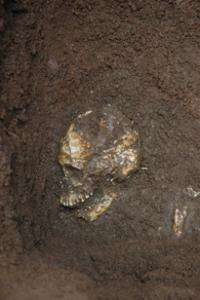 Ancient Pacific islanders brought to light
