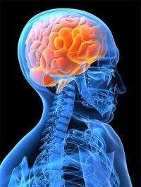 Brainwaves could help understanding of mental health disorders